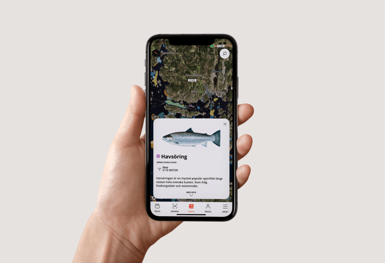 Ny app talar om var fisken finns